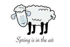 Овцы и текст Стоковое Фото