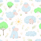 Овцы на grassplot Стоковые Изображения RF