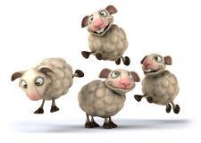 Овцы потехи Стоковое Изображение RF