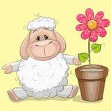 Овцы с цветком иллюстрация вектора
