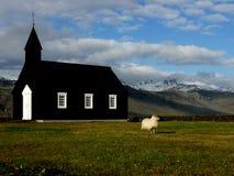 Овцы, церковь & гора Стоковое фото RF