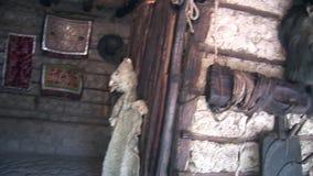 Овцы чучел в индейцах и Shuar Guarani хаты индигенных сток-видео