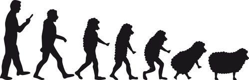 Овцы эволюции человека иллюстрация вектора