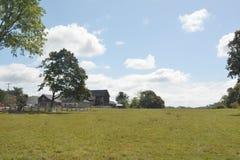 Овцы field в Mendham, NJ, США Стоковое фото RF