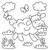 Овц-расцветка Стоковое Изображение RF