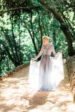 Оглушая невеста в красивом платье свадьбы на естественной предпосылке стоковое фото rf