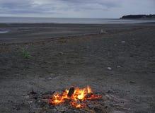 Огонь лагеря на пляже Стоковое Изображение