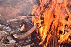 Огонь лагеря Стоковое Изображение RF