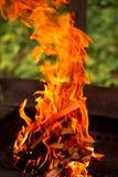 Огонь барбекю на темной предпосылке Стоковое фото RF