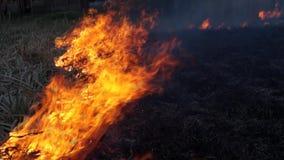 Огонь был видеоматериал