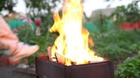 Огонь в барбекю видеоматериал