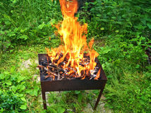 Огонь в барбекю стоковое изображение rf