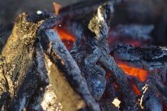 Огонь в действии Стоковое Изображение