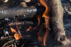 Огонь в лагере костры стоковые изображения rf