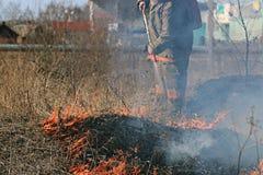 Огонь горя сухую траву опасно стоковые изображения rf