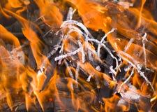 Огонь и красные тлеющие угли Стоковое Изображение RF