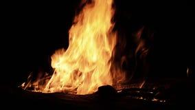 Огонь и нефть поглощая древесину на ноче видеоматериал
