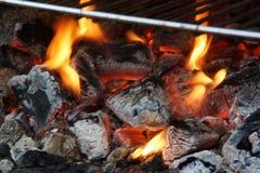 Огонь и тлеющие угли - взгляд шрифта Стоковое Изображение