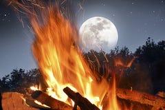 Огонь лагеря в лунном свете Стоковое Фото