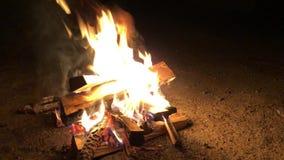 Огонь лагеря с дымом изолированным на черной предпосылке видеоматериал