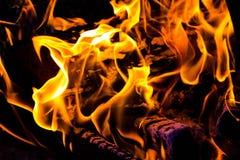 Огонь дракона Стоковое фото RF
