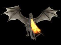 Огонь дракона Стоковая Фотография RF