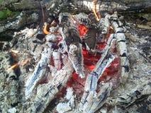 Огонь древесин Стоковые Фото