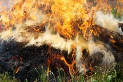Огонь соломы Стоковое Изображение