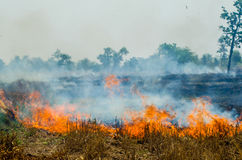 Огонь соломы Стоковое Фото
