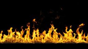 Огонь с альфой, HD, loopable акции видеоматериалы