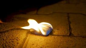 Огонь угля с древесиной на цементе Уголь огня на каменном поле Стоковые Изображения