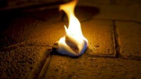 Огонь угля с древесиной на цементе Уголь огня на каменном поле Стоковое фото RF