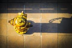 Огонь Hidrant Стоковые Изображения RF