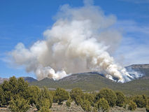 Огонь Rangeland стоковое фото rf