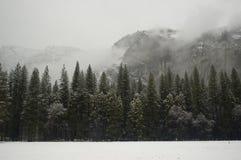 огораживает зиму yosemite стоковая фотография