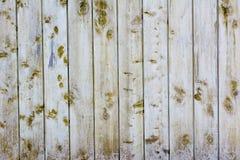 огораживает древесину стоковая фотография rf