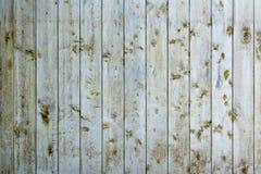 огораживает древесину стоковые изображения rf