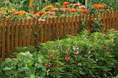 Огород с границей цветков Стоковое Изображение RF