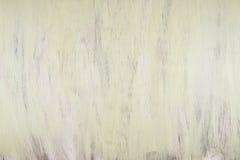 Огорченная предпосылка древесной зелени Стоковые Фото