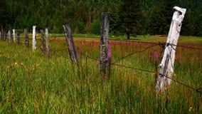 оградите Айдахо Стоковое Изображение RF