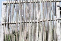 оградите солнцецветы лета лужка деревянные стоковая фотография rf