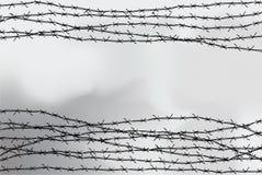 Ограждать колючей проволоки Загородка сделанная из провода с шипами Черно-белая иллюстрация к лагерю консоли холокоста иллюстрация штока