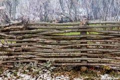 Ограждать переплетаннсяых штаног на фоне growin Стоковая Фотография RF