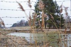 Ограждать реки колючей проволоки Опасная закрытая область стоковые изображения