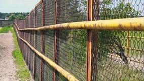 Ограждать сетки Железная загородка на ферме лошади Решетка загона сток-видео