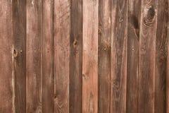 оградите солнцецветы лета лужка деревянные Стоковые Фотографии RF