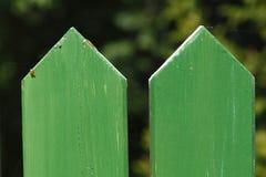 оградите солнцецветы лета лужка деревянные Стоковые Фото