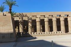Огромные столбцы как висок Karnak цветка лотоса Стоковая Фотография RF