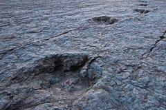 Огромные следы ноги динозавра, Maragua, Боливия Стоковые Фотографии RF