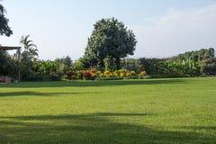 Огромный задний двор для любого внешнего случая Стоковая Фотография RF